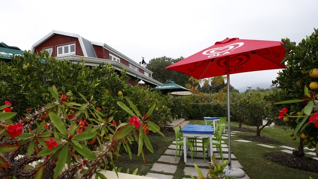 Storms River Guest House Accommodation